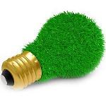 audit energetic companii