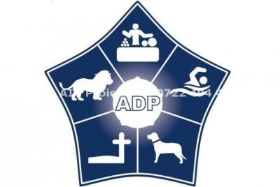 Acord Administratia Domeniului Public